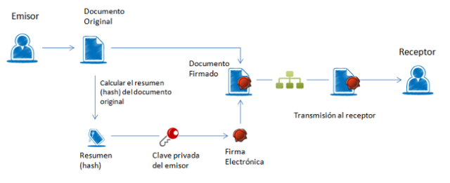 procesodefirma pequena (1)